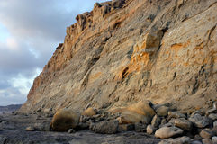 Sea Cliffs from the Beach, California. The sea cliffs of Del Mar, California, in San Diego County southern California, as seen from the beach in the late Stock Photo