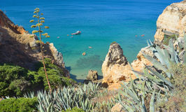 Sea Cliffs at Lagos Algrave Portugal. Stock Image