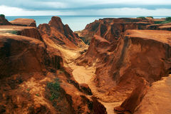 Free Sea Cliffs Of Morro Branco Royalty Free Stock Images - 24687679