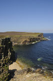 Sea-cliffs, Orkney Royalty Free Stock Photos