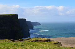 Sea Cliffs Stretching for Miles in Ireland`s County Clare. Lush green sea cliffs that stretch for miles in County Clare Royalty Free Stock Image