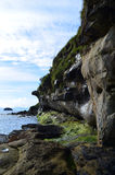 Sea Cliffs. Towering sea cliffs on the Isle of Skye Royalty Free Stock Photography