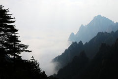 Sea of cloud in Huangshan Stock Image