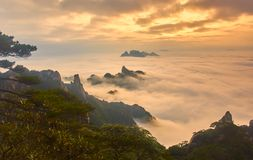 Sea of clouds in sunset Stock Photos