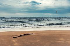 Sea coast on a cloudy day. Landscape royalty free stock photos