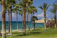 Sea coast. Cyprus. Mediterranean. Vacation paradise on the seashore:  turquoise sea, palm trees,  sandy beach,  blue cloudy sky. Spring in Cyprus. The Stock Photo