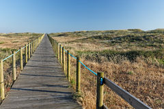 Sea coast dune with wooden walkway Stock Photos