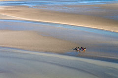 Sea coast at low tide Royalty Free Stock Photography