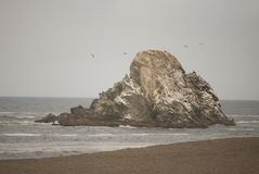 Sea, Coast, Rock, Shore royalty free stock photos