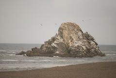 Sea, Coast, Rock, Shore royalty free stock images