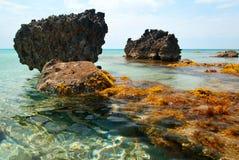 Sea Coast with Rocks Stock Photography