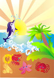 Sea coast with sea animals, vector illustration. Dolphin jumping out of water, sea animals on sea coast, vector illustration Royalty Free Stock Photography