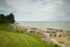 Sea coast in the spring in hot weather Royalty Free Stock Photography