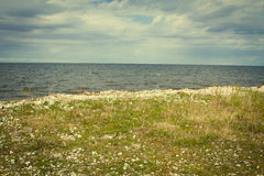 Sea coast in the spring in hot weather Royalty Free Stock Photos