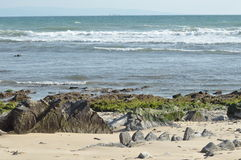 Sea coast in Tarifa. Royalty Free Stock Images
