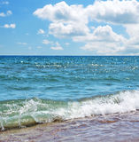 Sea coast. Wave Stock Image
