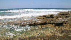 The sea coast with waves