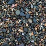 Sea cobblestone Royalty Free Stock Photo