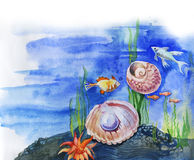 Sea cockleshell with a pearl. Fishes, seaweed and cockleshell on a sea-bottom. Drawing a water color Stock Image