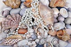 Sea cockleshells and pearls Stock Photos