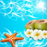 Sea, coconut cocktail, sea star Royalty Free Stock Image