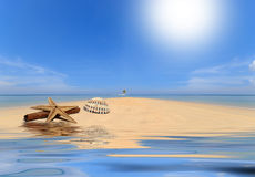 Sea and coconut palm on desert island Stock Photos
