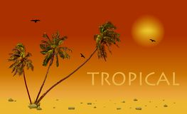 Sea and coconut palms. Vector sunset Stock Photos