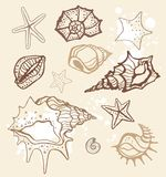 Sea collection. Hand drawn  illustration Royalty Free Stock Image
