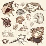 Sea collection. Hand drawn  illustration Stock Photo