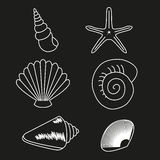 Sea collection. Original hand drawn illustration 2 Royalty Free Stock Images