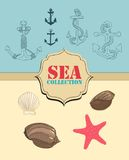 Sea collection Royalty Free Stock Images