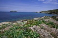 Sea of Corsica Stock Image