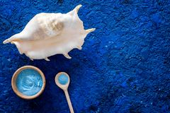 Sea cosmetics and shell from dead sea for homemade spa blue background top view mock up. Sea cosmetics and shell from dead sea for homemade spa on blue Stock Images