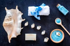 Sea cosmetics and shell from dead sea for homemade spa dark background top view Stock Images