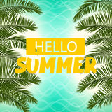 Sea cost green palm leaf hello summer Royalty Free Stock Images