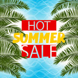 Sea cost green palm leaf hot summer sale Royalty Free Stock Image