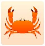 Sea crab Royalty Free Stock Photos