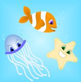 Sea Creatures. Clown fish, Star fish and Jelly fish friends swimming in the ocean Royalty Free Stock Photos