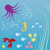 Sea Creatures Royalty Free Stock Photos