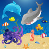 Sea Creatures. Set of Cartoon Sea Creatures Stock Image