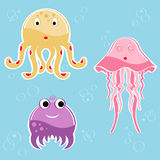 Sea creatures Stock Photo