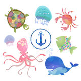 Sea creatures. Royalty Free Stock Photography