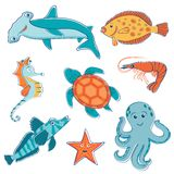 Sea creatures collection Stock Photos