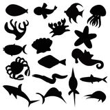 Sea creatures Stock Images