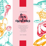 Sea Creatures - color drawn vintage banner template. Stock Images