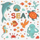 Sea creatures colorful collection Royalty Free Stock Photos