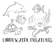 Sea Creatures Contours. Sea Creatures Set, Cartoon Dolphin, Fish, Turtle, Octopus and Algae Black Contours Isolated on White Background. Vector Stock Image