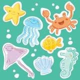 Sea creatures Stock Image
