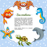 Sea creatures forming a frame Stock Images