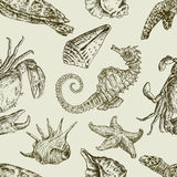 Sea creatures pattern. Vector pattern with various sea creatures vector illustration